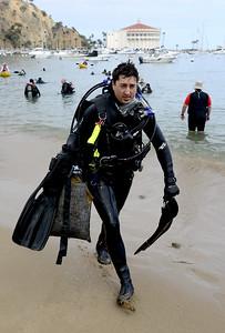 Avalon Underwater Cleanup